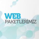 Cevizli Web Tasarım
